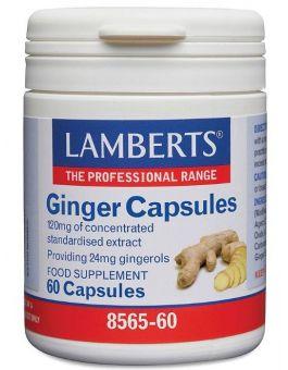 Lamberts Ginger Capsules 12,000mg Extract (60 Capsules) # 8565