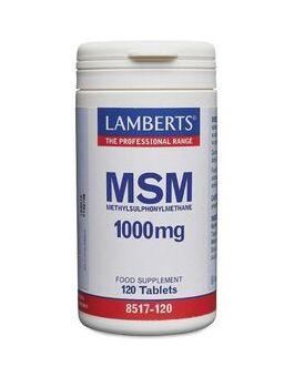 Lamberts MSM 1000mg (120 Tablets) # 8517