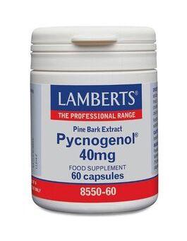 Lamberts Pycnogenol 40mg ( 60 Capsules) #8550